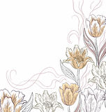 Flowers tulips on a light brown Royalty Free Stock Images