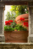 Flowers in a Tuscan village Stock Image
