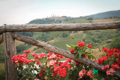 Flowers in Tuscany. Flowers on a fence with a view of Tuscany Stock Photo