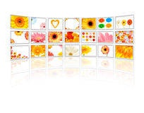 Flowers on tv Royalty Free Stock Images