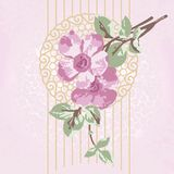 Flowers with twigs on an openwork circle. Flowering branch on an openwork circle and a complex background. Illustration of delicate and vintage. Cover for cards Stock Images