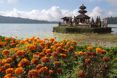 Flowers and Ulun Danu Bratan Royalty Free Stock Photos