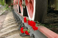 Flowers under the wheels. Royalty Free Stock Photos