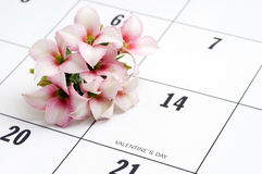 Flowers on Valentine's Day Stock Images