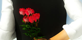 Valentine Flowers Royalty Free Stock Images