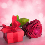 Flowers for valentines or mothers day Royalty Free Stock Photos