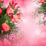 Flowers for valentines or mothers day Royalty Free Stock Photography