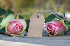 Flowers for valentines or mothers day Stock Photography