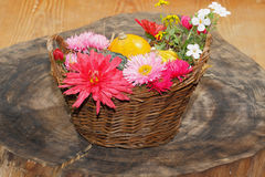 Flowers various garden flowers and ornamental gourds in a basket Stock Photography