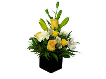 Flowers in a vase Stock Image