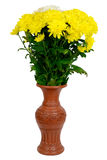 Flowers in the vase. Bouquet of Flowers in the vase Stock Photos