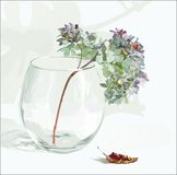 Flowers in a vase. Flowers in a glass vase Royalty Free Stock Image