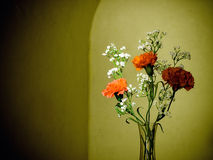 Flowers in a vase Royalty Free Stock Photos