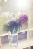 Flowers in vase behind tulle curtain Stock Photography