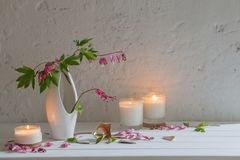 Flowers in vase with candles on background white wall. The flowers in vase with candles on background white wall Royalty Free Stock Images