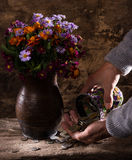 Flowers in vase, caucasian old man's hands  and pile of old coins Stock Images