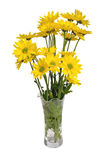Flowers and Vase with Clipping Path Royalty Free Stock Photos