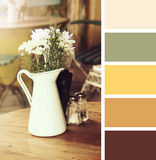 Flowers in a vase.  color palette swatches. Royalty Free Stock Image