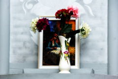 Flowers in a vase on a gray background Stock Photography