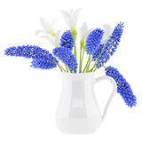 Flowers in vase isolated on white Stock Photos