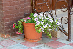 Flowers in vase near ornate forged door fence Royalty Free Stock Images