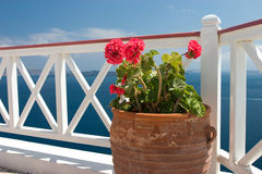 Flowers in vase on summer balcony. Vase with geraniums on the balcony in Greek island Santorini royalty free stock photo