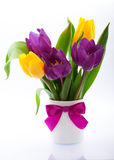 Flowers in a vase on a white background Stock Image