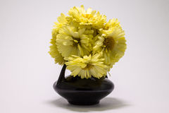 Flowers in a vase. Yellow flowers in a small vase Royalty Free Stock Images