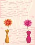 Flowers in vases Stock Photo