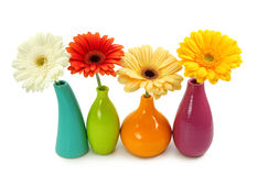 Flowers in vases royalty free stock photography