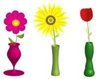 Flowers and vases illustration Stock Images