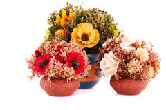 Flowers in vases Royalty Free Stock Photos