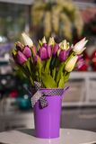 Flowers in vases used for home decoration. On blur background royalty free stock image