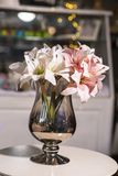 Flowers in vases used for home decoration. On blur background stock images