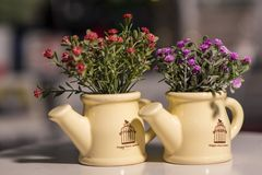 Flowers in vases used for home decoration. On blur background royalty free stock photos
