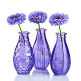 Flowers in vases on white Royalty Free Stock Photography