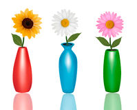 Flowers in vases  on white background Royalty Free Stock Photos