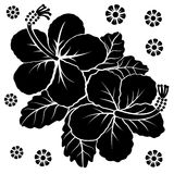 Flowers vector Stock Photos