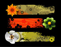 Flowers vector composition Royalty Free Stock Photography