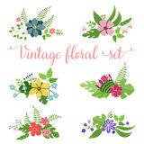 Flowers vector design. Set of floral icon Royalty Free Stock Photography