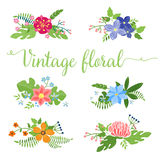 Flowers vector design. Set of floral icon Royalty Free Stock Photos