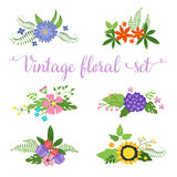 Flowers vector design. Set of floral icon Stock Images