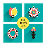 Flowers vector design. Set of floral icon, flower set Royalty Free Stock Photos