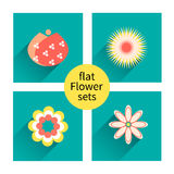 Flowers vector design. Set of floral icon, flower set Royalty Free Stock Images