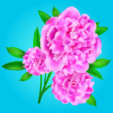 Flowers. Vector illustration with flowers - EPS 10 royalty free illustration