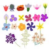 Flowers vector set Royalty Free Stock Photos