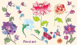 Flowers vector set with lotuses and peonies. asian theme Royalty Free Stock Image