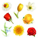 Flowers, vector set Stock Photo