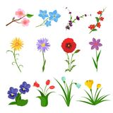 Flowers vector set on white background. Garden wild flower icons. Floral icons, summer spring flat. Rose, iris, tulip vector illustration