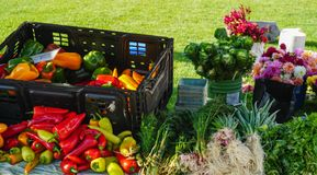 Flowers and vegetables at farmers market Stock Image